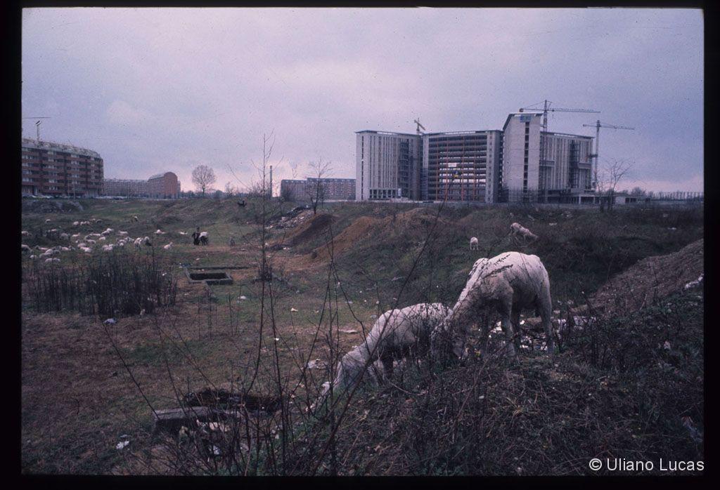 Cantiere ospedale san paolo barona 1971 da via ovada (ilianolucas)