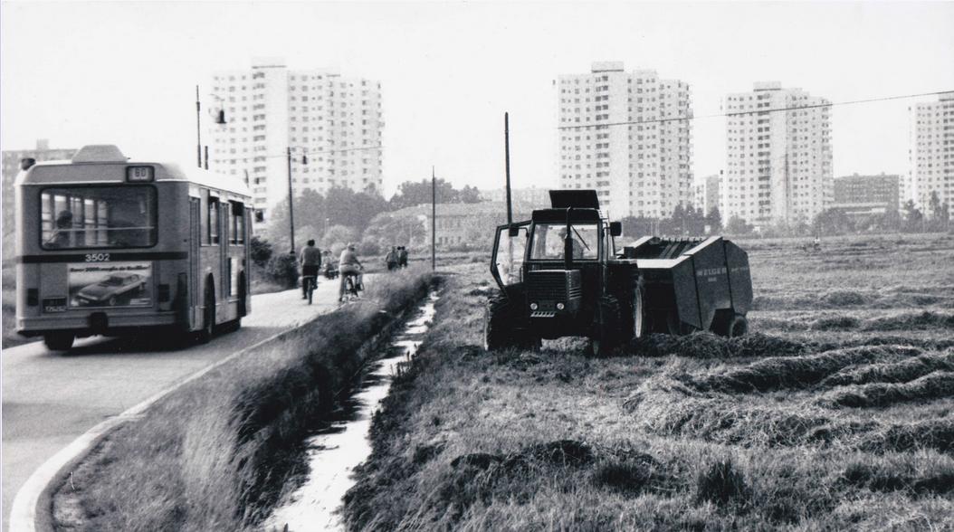 Milano Gratosolio 1982. Via Selvanesco ?