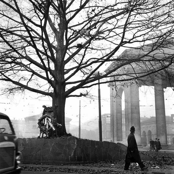 Ticinese. Piazza XXIV Maggio (anni '50-'60), Autore Ferruccio Malandrini. La quercia ritratta nella foto è divenuta secolare alcuni anni fa.